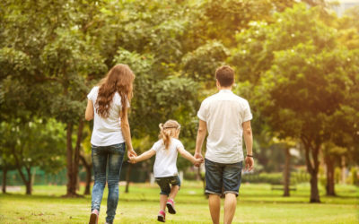 Are UK Families at risk from the Two-Income Debt Trap?